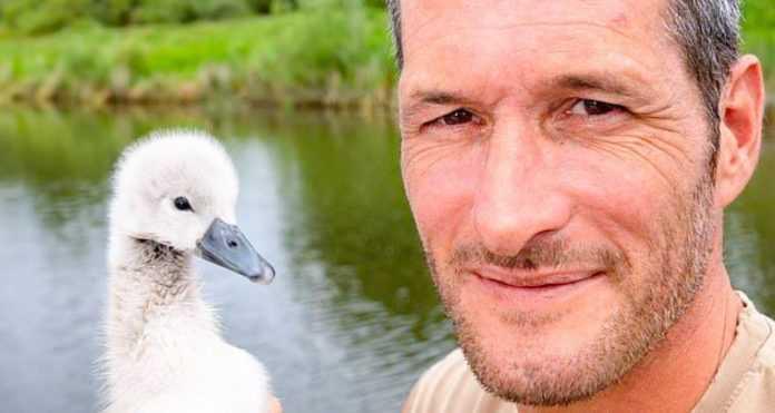 Uma vez um homem salvou um patinho, e um lindo cisne cresceu, que agora não quer voar para longe dele.